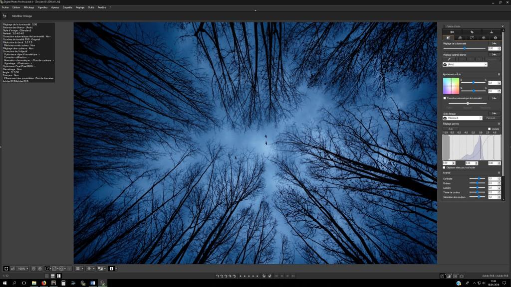 Stage photo Canon digital photo professionnel