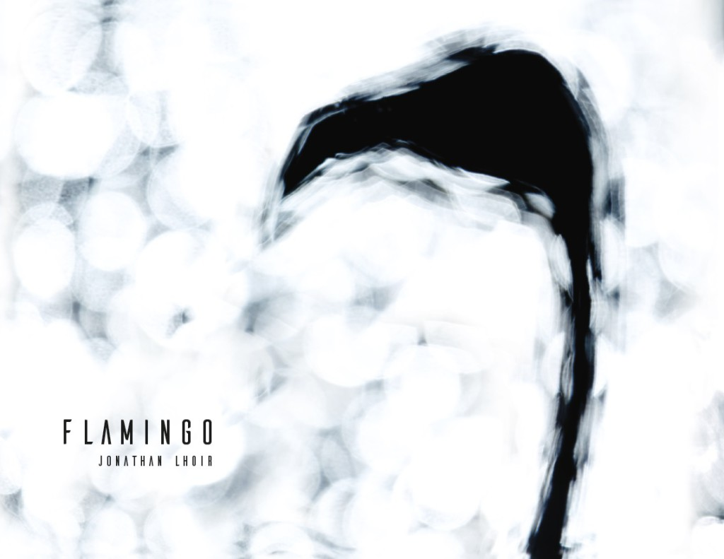 Flamingo_cover