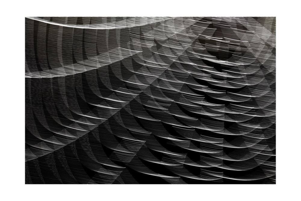 -08- Spider Web