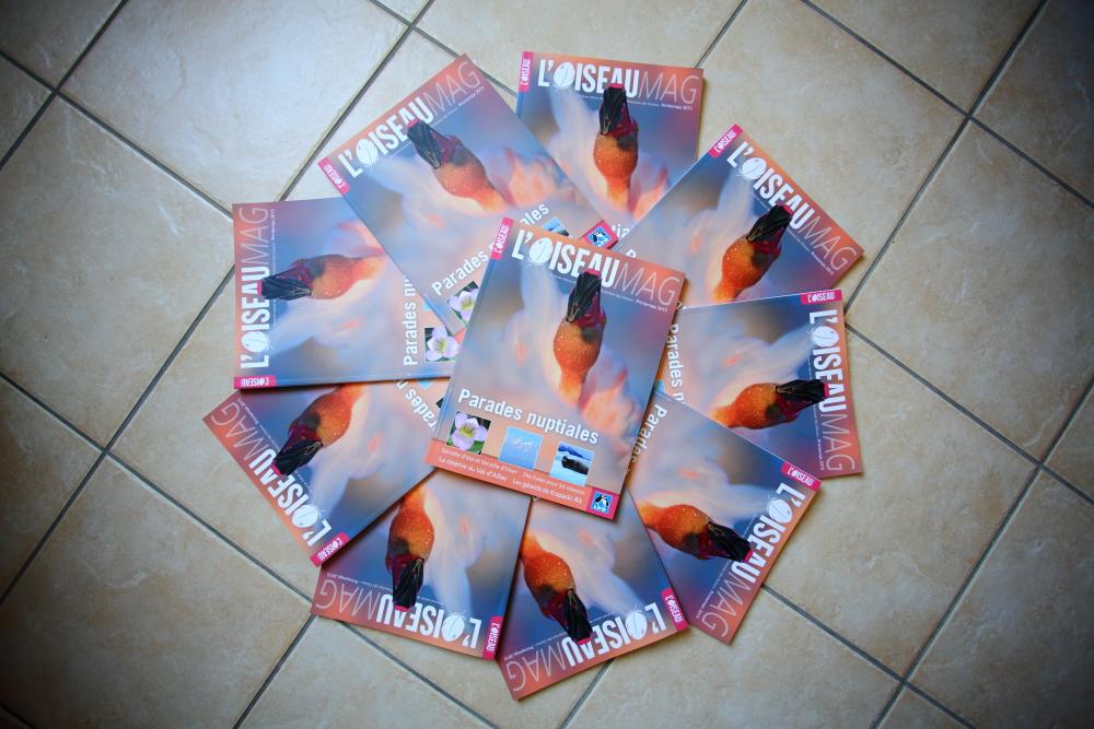 LPO - L'oiseau Mag 118