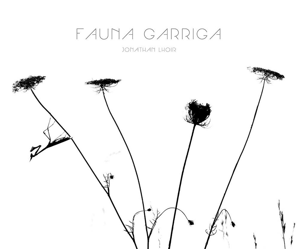 Fauna_garriga_Jonathan_Lhoir