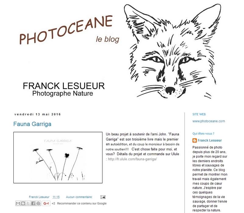 FG_Photoceane
