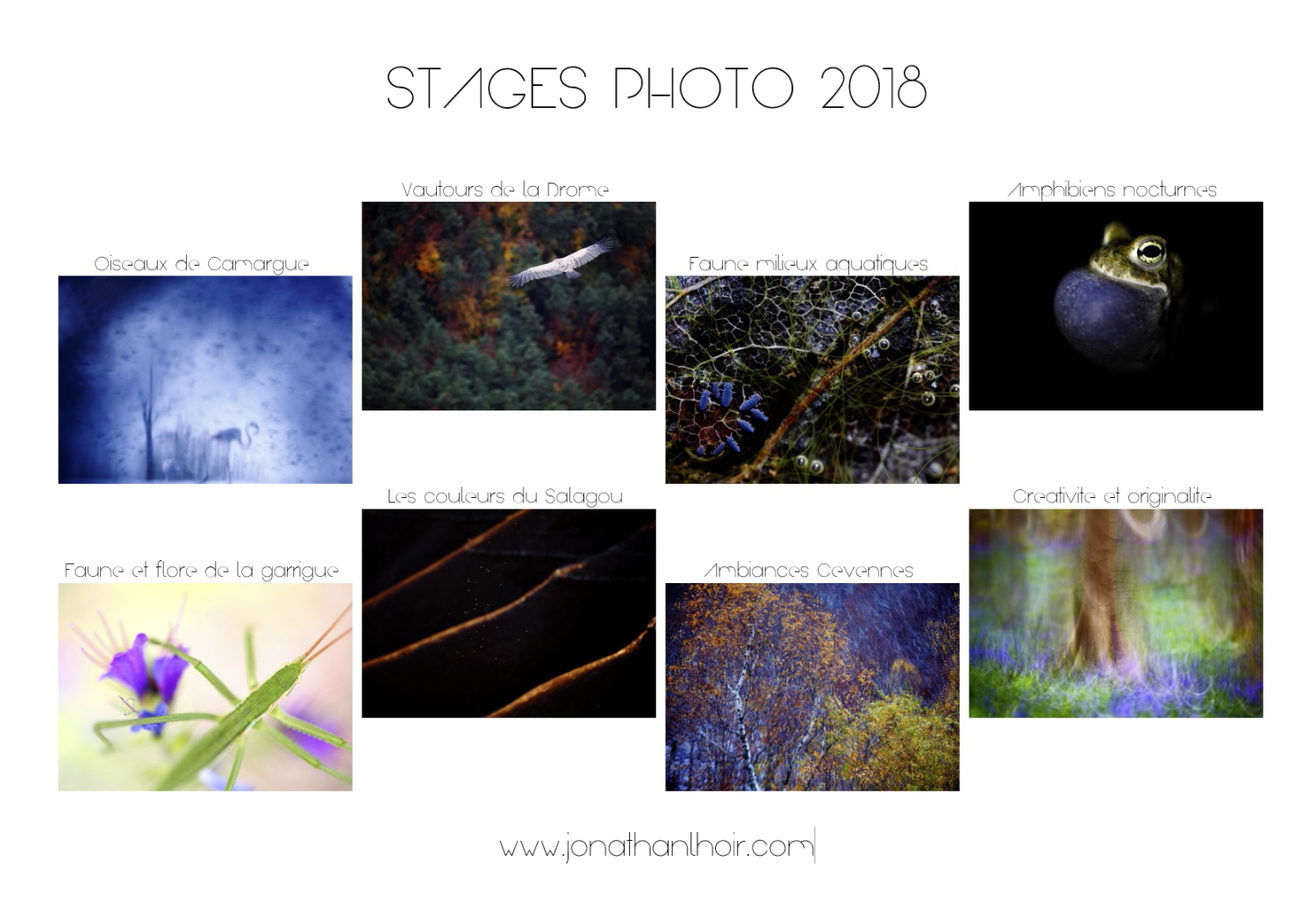 Stages photo 2018